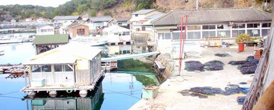 真珠養殖場1